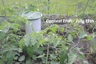Worm Composting with Marle + {Tube Giveaway!}