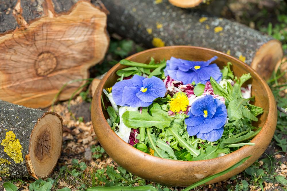 reen salad with dandelions and blue pansies