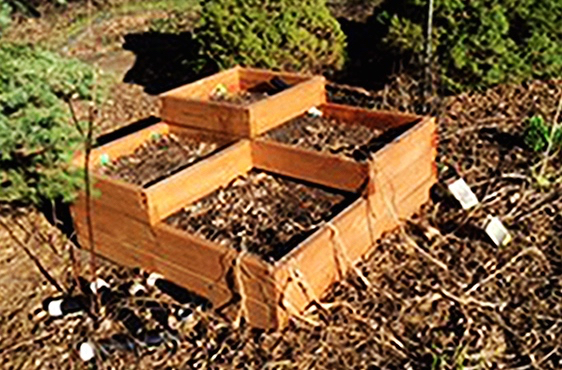 Finished Multi-level Raised Bed