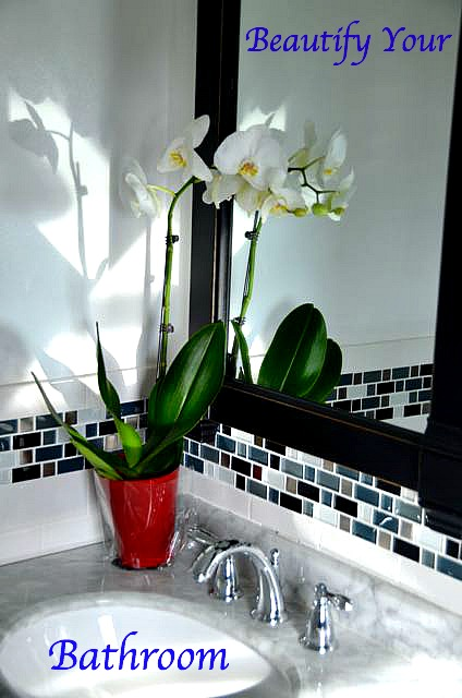 Growing orchids in your bathroom