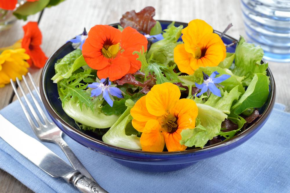 Edible flowers for food and drink
