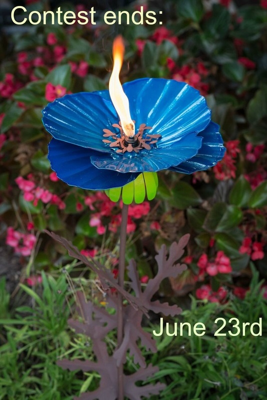 Backyard ambience with Desert Steel Torches Giveaway!