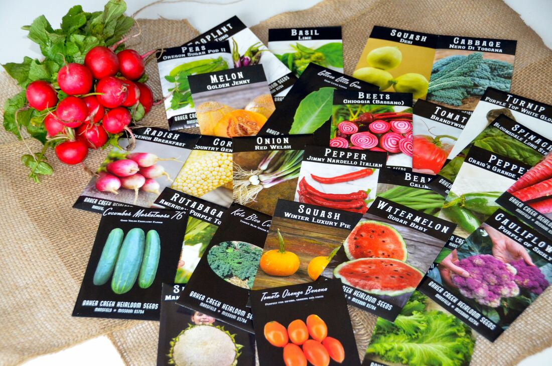 Spring is here with indoor seed planting tips!