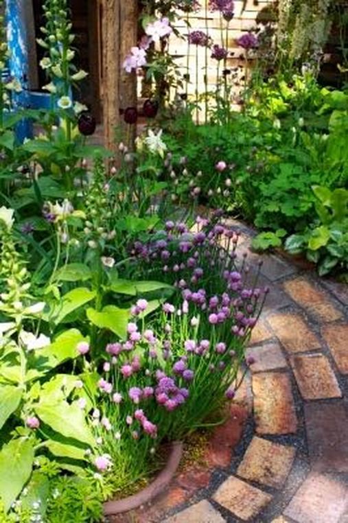 garden with chives and hollyhocks