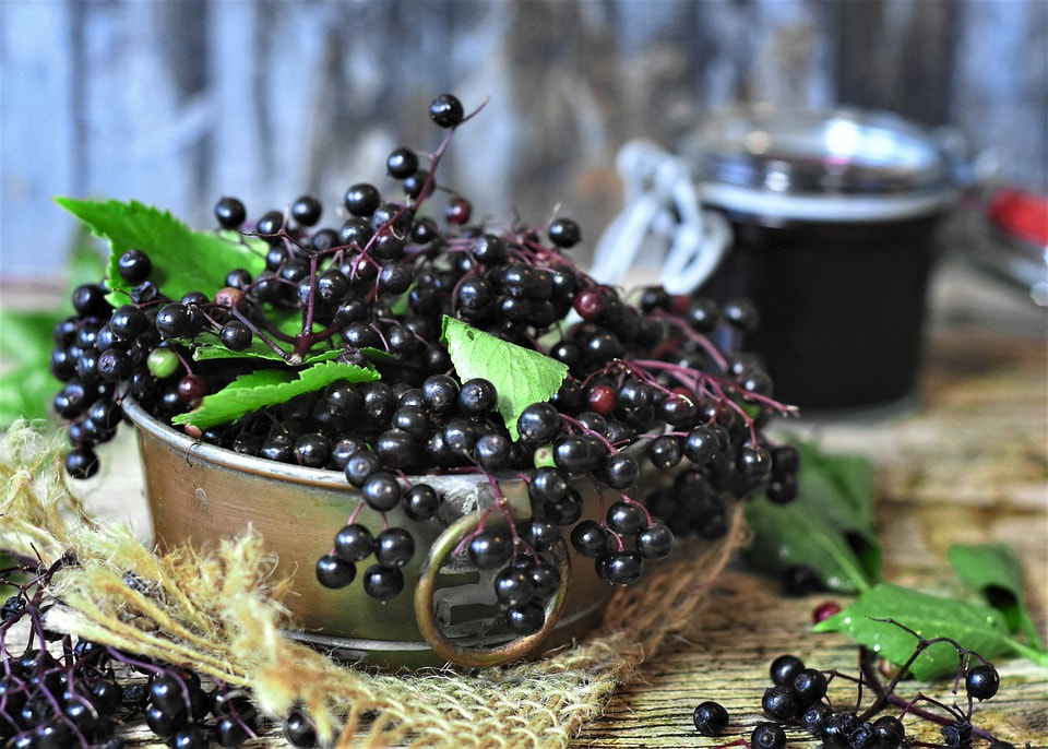 Homemade elderberry syrup to prevent sickness with raw honey for flu, cough and cold