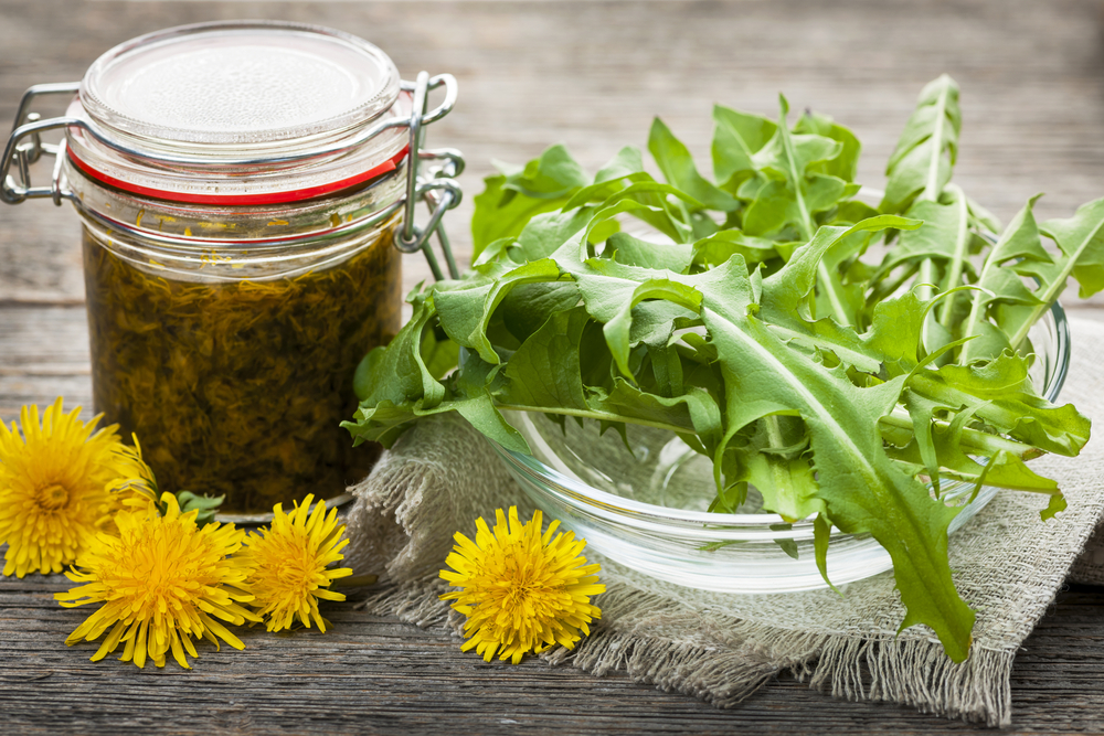 dandelion salad with dandelion jelly