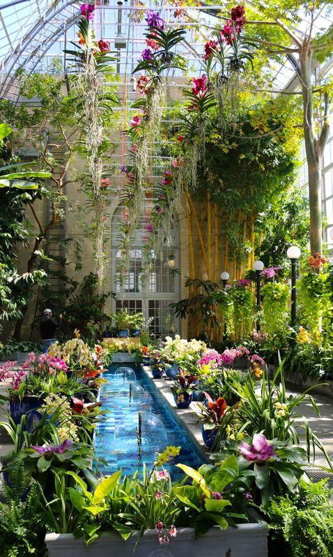 U.S. Botanic Garden Conservatory Washington D.C.Picture