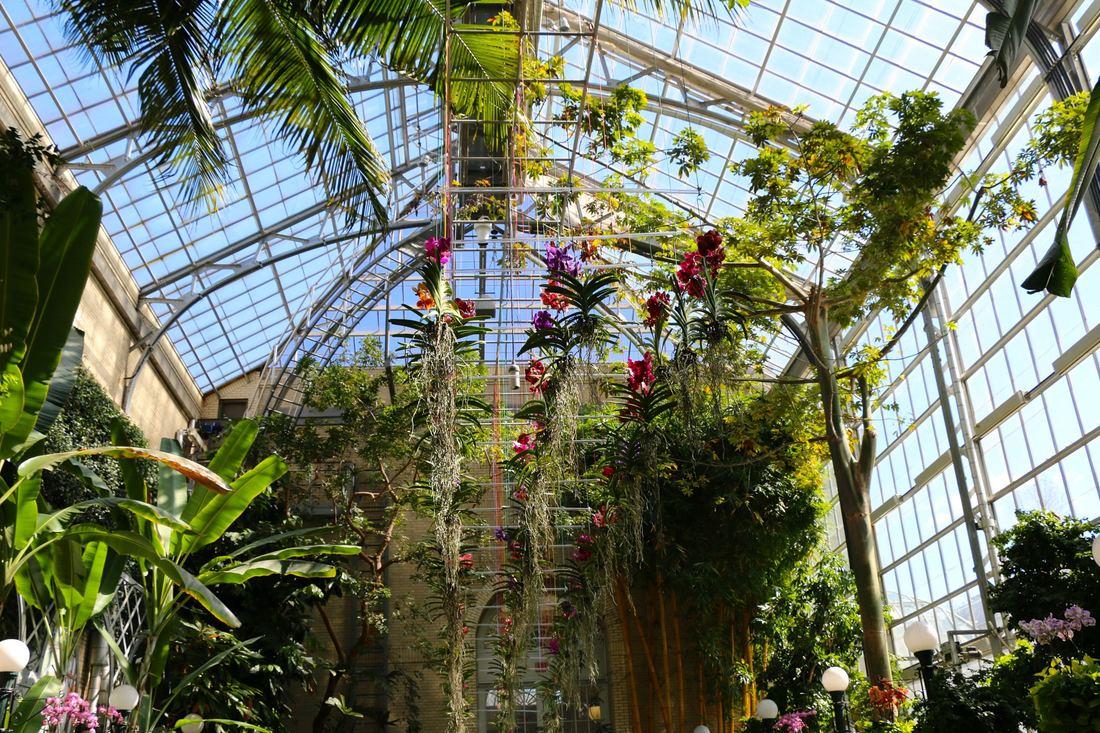 U.S. Botanic Garden Conservatory Washington D.C.
