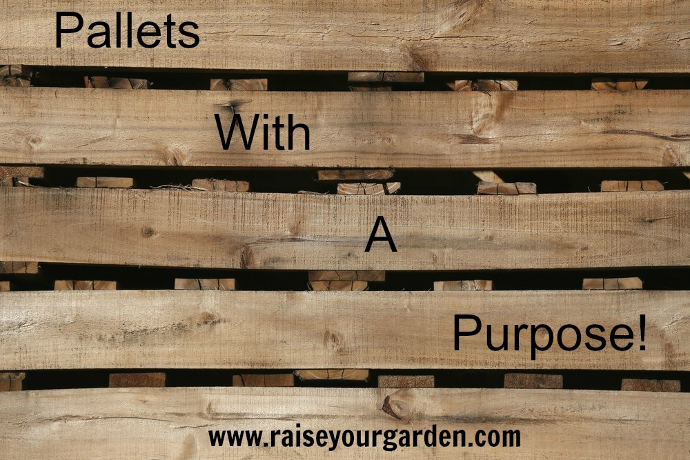 Recycling pallets for creative DIY projects