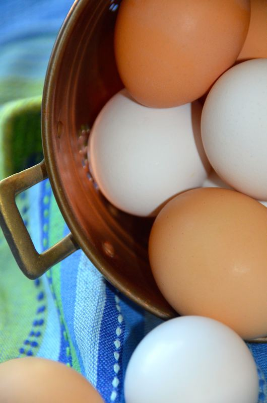 Food safety 101 with eggs, bacon, milk and more….