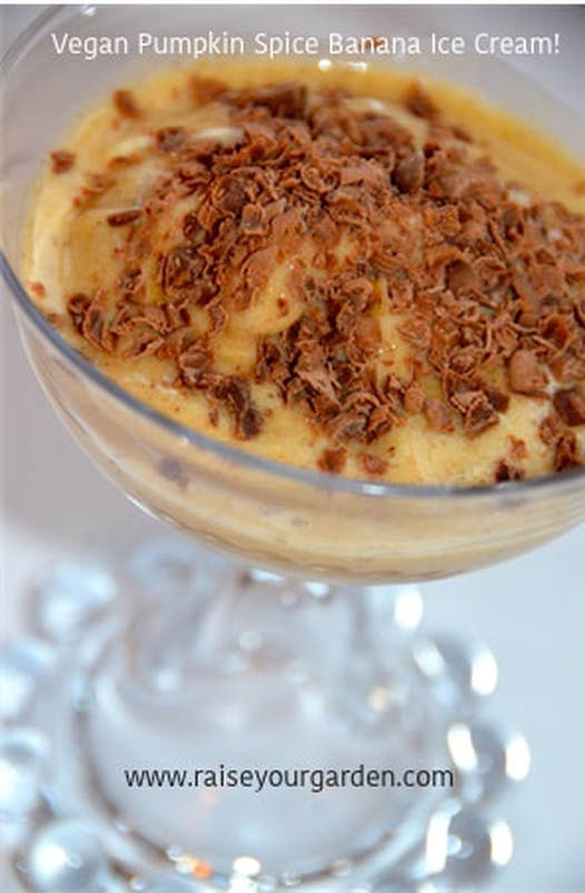 Easy Vegan Pumpkin Spice Banana Ice Cream with just 4 ingredients!