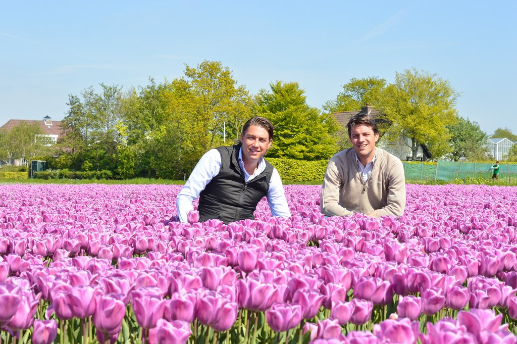 Plant bulbs with Ben & Pete - Brothers & 4th Generation DutchGrown Owners!
