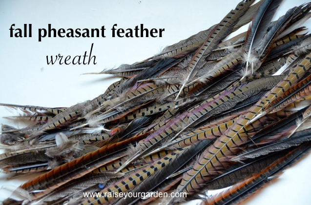 pheasant feathers are vital, real or faux pheasant feather