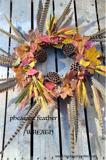 fall pheasant feather wreath