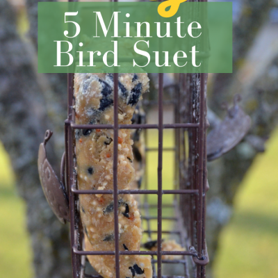 DIY Simple suet recipe for the birds