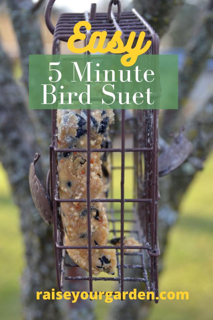 Easy DIY bird suet
