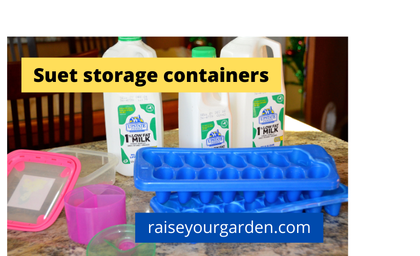 Containers to store your suet