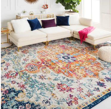 multi-colored area rug
