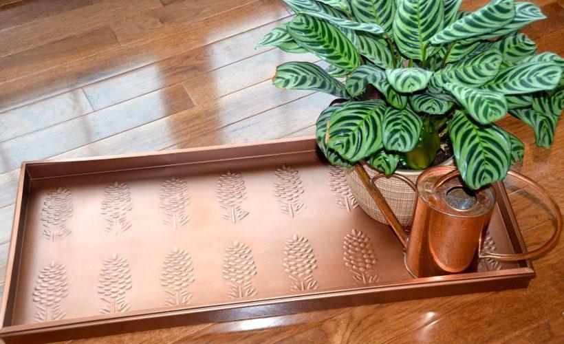 Multi-purpose boot tray