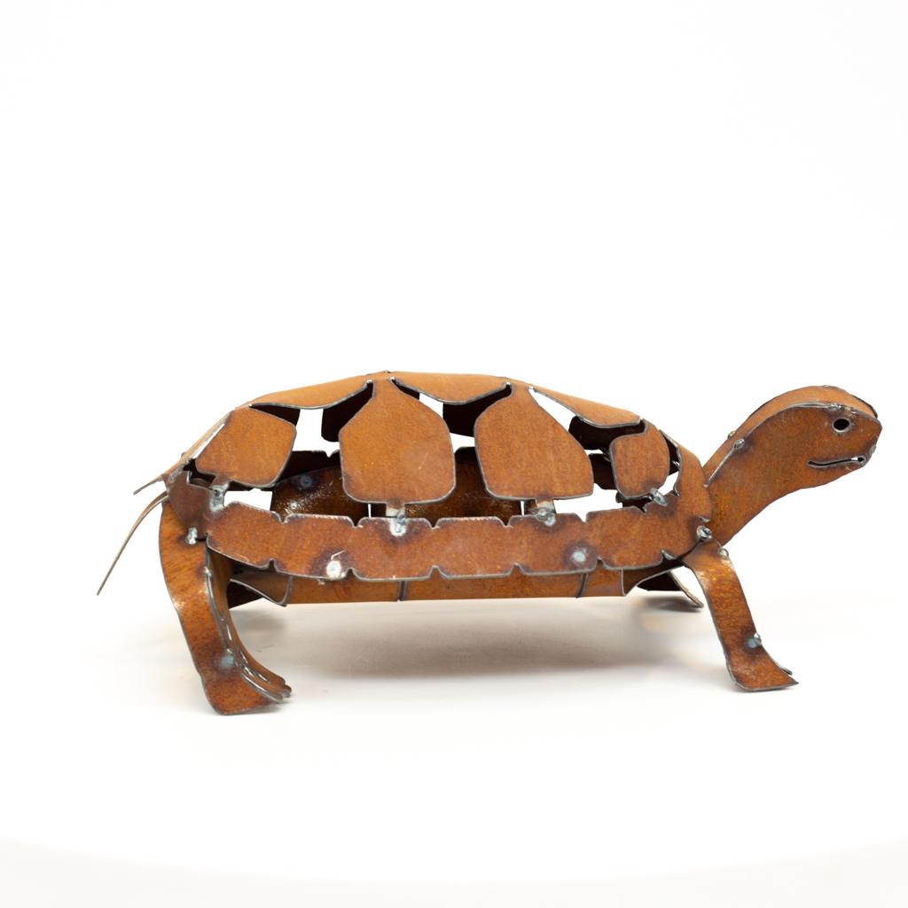 steel turtle