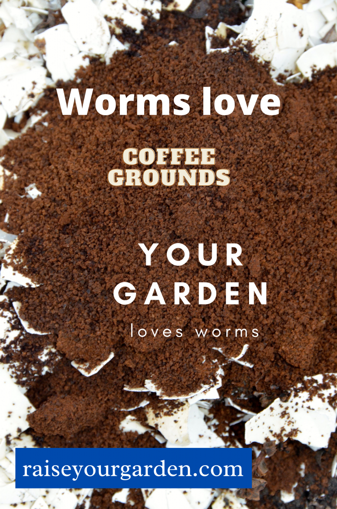 Worms love coffee grounds