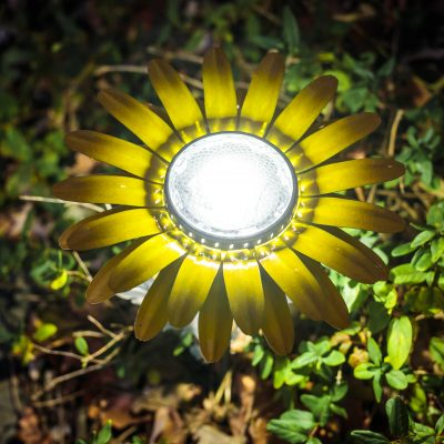 Brighten up with this yellow Daisy Solar Light set  from Desert Steel ARV $171!