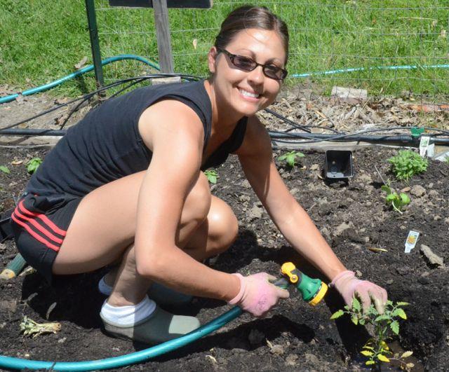 Laura planting tomatoes