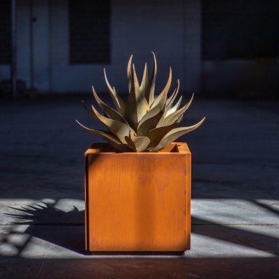 Desert Steel Butler Planter & Sharkskin Agave astounding $700 giveaway!