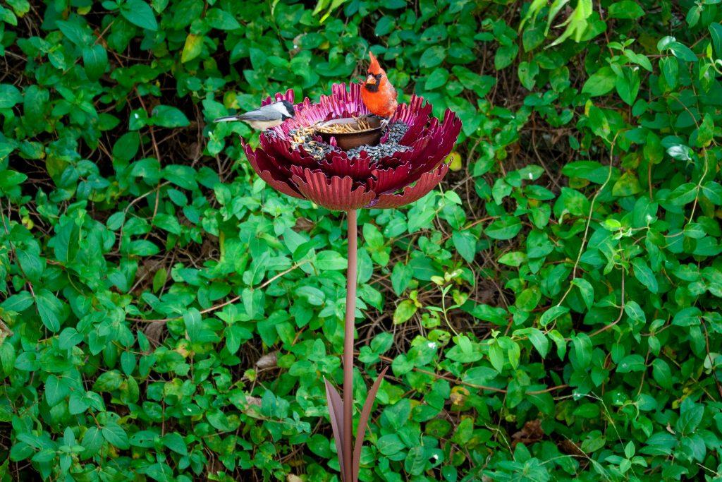 Pink parfait Peony bird feeder