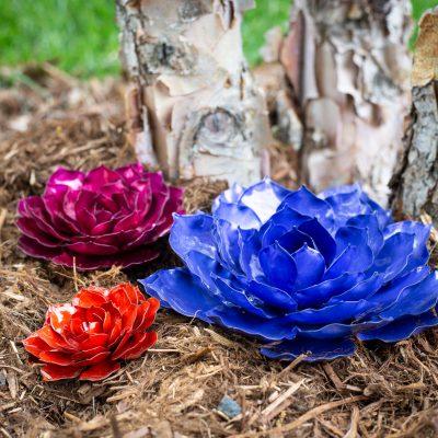 Mini rose succulent trio giveaway from Desert Steel ARV $150!